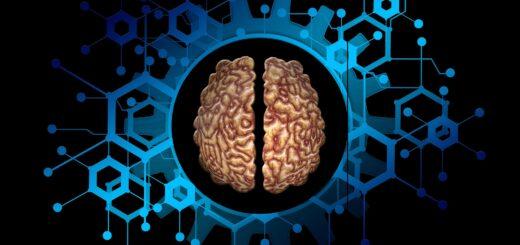 neuroscienze forensi